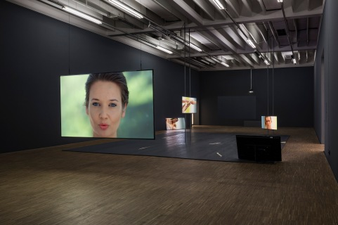 "Installation View of ""Vladimir"" by Katarina Zdjelar, Salzburger Kunstverein, 2018"